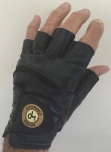 gloves Aug 22 2015 001