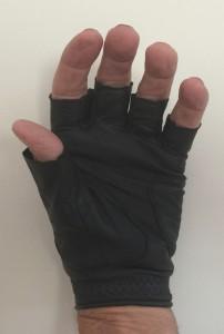gloves Aug 22 2015 002